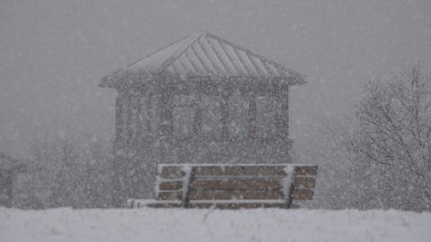 Park Bench During Snow Storm Live Action