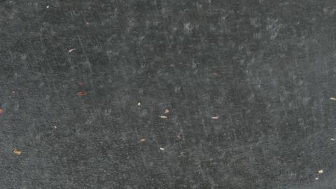 Heavy Rain On Asphalt Footage