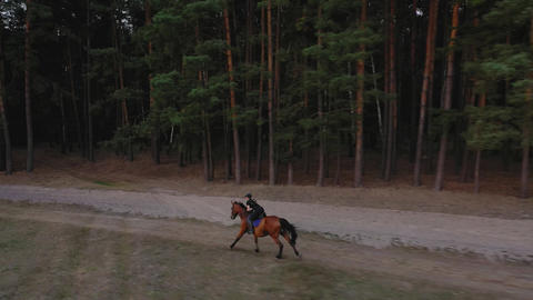 View from the height of woman riding a brown horse by gallop outdoors Footage