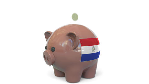 Putting money into piggy bank with flag of Paraguay. Tax system system or Live Action