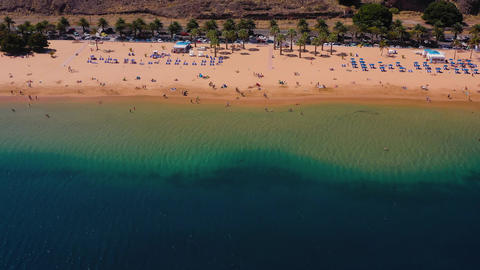 View from the height of the golden sand, palm trees, sun loungers ビデオ