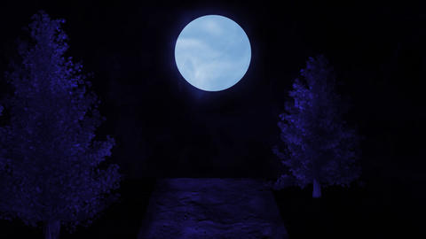 Cinematic view in night forest. Blue tint Animation