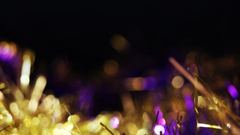 Shimmering-tinsel-with-light-effect 10 Photo