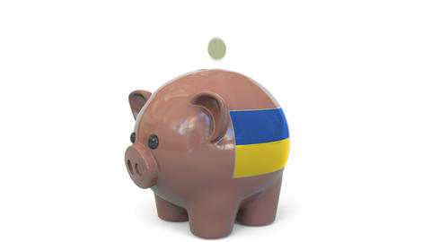 Putting money into piggy bank with flag of Ukraine. Tax system system or savings Live Action
