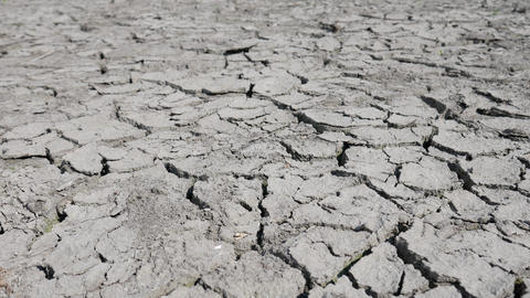 Lake Bed Drying Up Due to Drought Footage