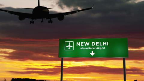Plane landing in New Delhi CG動画