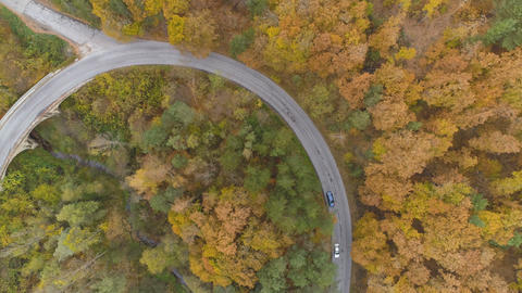Drone following two cars speeding on winding forest road in the fall season Live Action