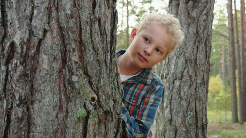Playful boy hiding behind tree in forest GIF