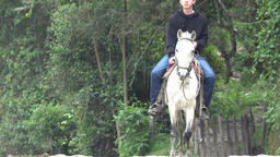 Horseback Riders near Forest Live Action