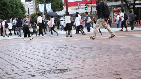 渋谷駅前の信号待ち風景(足元のみ) Footage
