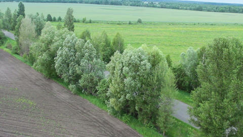 Aerial countryside view, landscape, trees, road, blue horizon, air balloon pov Footage