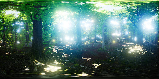 VR 360 Firefly Flying in the Forest GIF