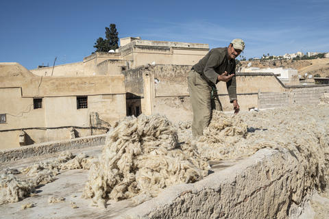 washing and drying and dyeing wool フォト