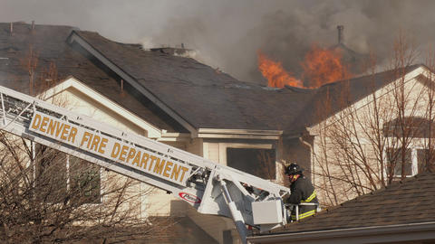 DFD Firefighter looks At Blazing Roof GIF