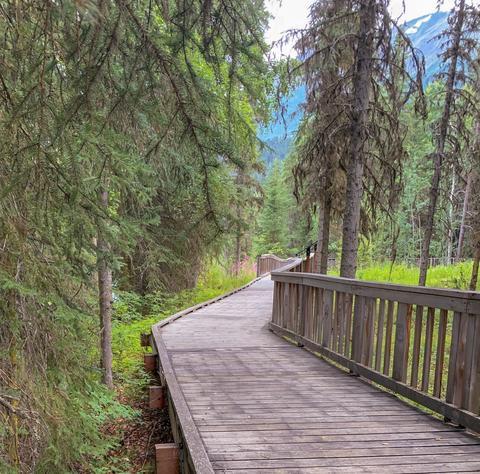 Views while hiking Photo