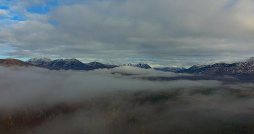 Wilderness views フォト