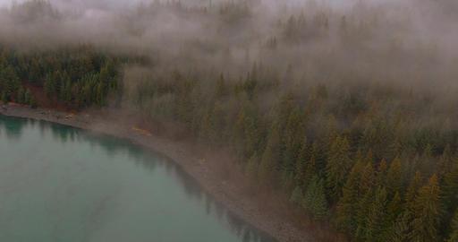Fog on the coast フォト