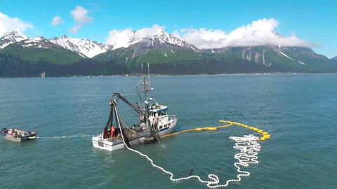 Summer salmon fishing フォト