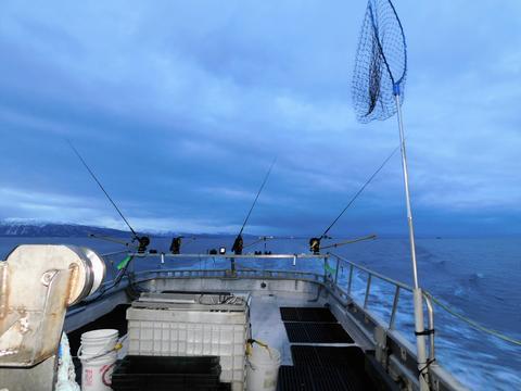 Winter salmon fishing フォト