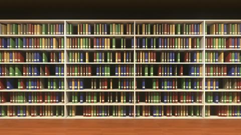 Moving along book shelves with random books on each shelf GIF