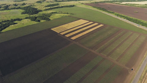 Aerial view of fermer fields. Aerial video GIF
