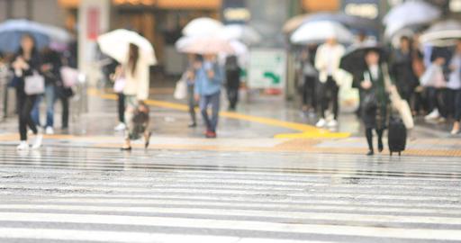 Walking people at the downtown street in Shinagawa Tokyo rainy day handheld ライブ動画