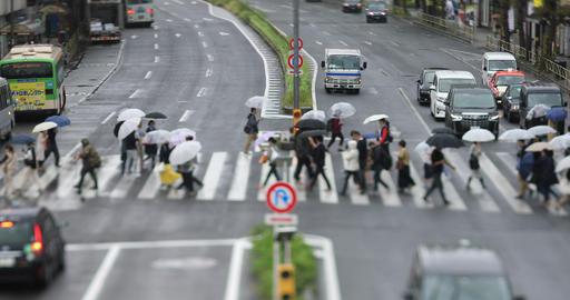 Walking people at the downtown street in Shinagawa Tokyo rainy day high angle ライブ動画