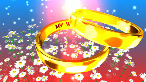 174 3d animated wedding footage with words my wedding Animation