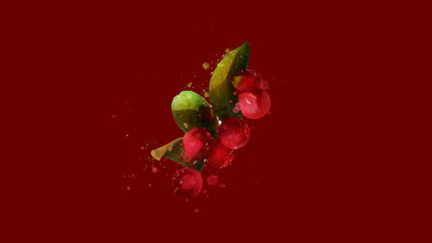 Watercolor Christmas decoration - red berries and leaves, on the alpha channel Videos animados