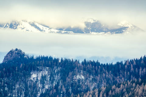 Winter Fog and Clouds in the Wooded Mountains フォト