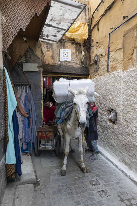 the transport of goods in the medina フォト
