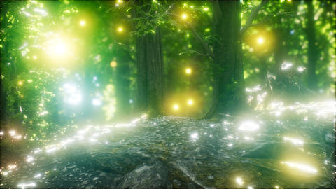 Firefly Flying in the Forest GIF