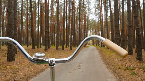 A man rides a bicycle in the forest. A beautiful road among old pines ビデオ
