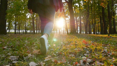 A girl walks through a beautiful park with leaves in her hand. Autumn landscape ビデオ