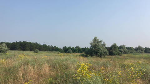Steppe in the Ukraine Footage