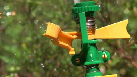 Working Lawn Sprinkler System Live Action