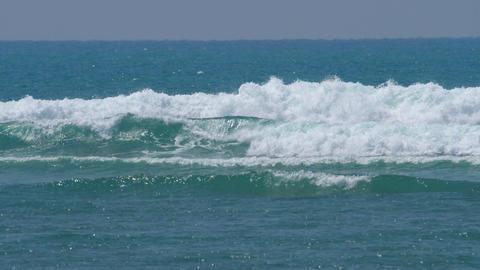 Waves on Coral Reef ビデオ