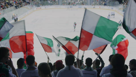 fans support hockey team waving flags on spectator seats ビデオ