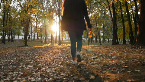 A girl walks in the park with yellow leaves in her hand. Beautiful sunset ビデオ