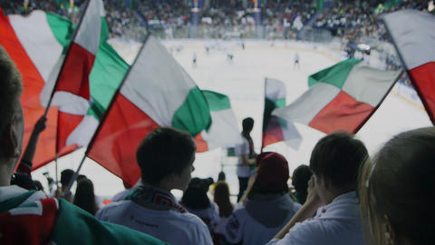 sports fans support hockey team waving colorful flags GIF