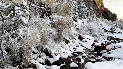 Fresh snow covers the landscape near Boulder Colorado GIF