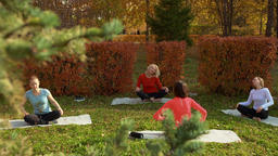 High angle view of women relaxing during zen meditation in park GIF