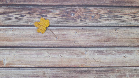 Yellow leaf falling on wooden background - Stop motion animation Animation