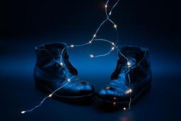 the magic laces フォト