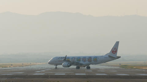 Japan Airlines (JA254J) passenger plane on runway Live Action