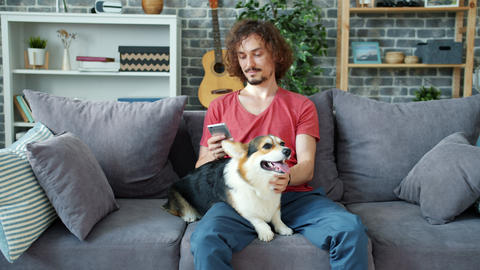 Handsome guy using smartphone and stroking corgi dog on couch at home Archivo