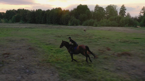 Aerial view of woman riding horse by gallop through a meadow at sunset Footage
