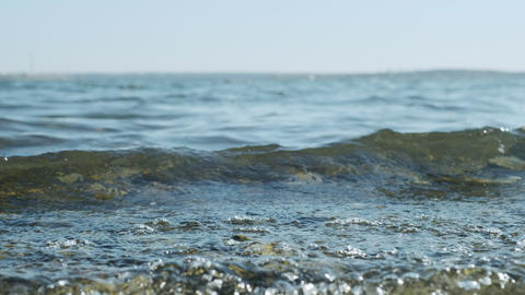 Clear water in the sea, the concept of rest relax, summer vacation. Natural sea Live Action