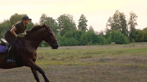 Woman riding horse by gallop through a meadow at sunset. Horseback riding in Archivo
