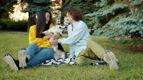 Young man and woman kissing and hugging lovable welsh corgi dog in city park Archivo